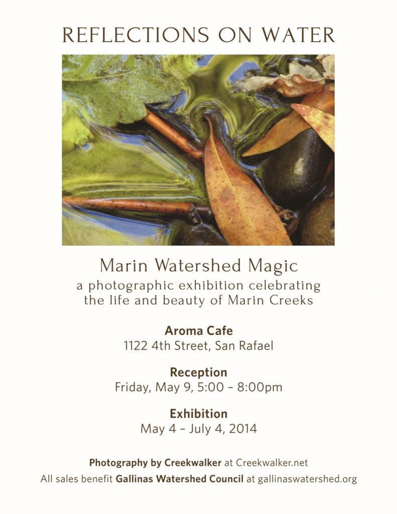Reflections on Water Marin Watershed Magic photo exhibit