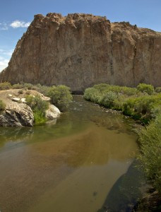 Walker River, Walker River Watershed